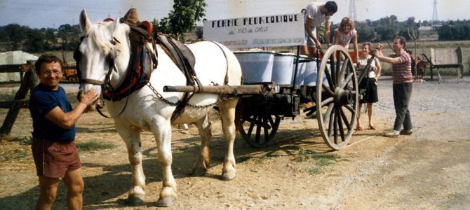 Attelage de la ferme pédagogique du Mas de Grille (années 80)
