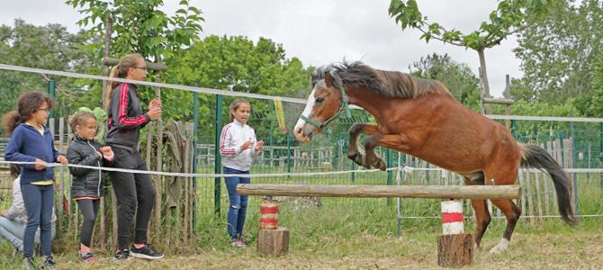 Un groupe d'enfants regarde un cheval sauter un obstacle dans un rond de longe