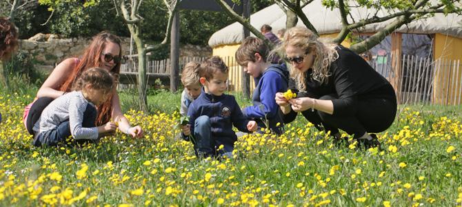 es enfants et leurs parents accompagnés d'un animateur récoltent des fleurs dans le verger de l'Écolothèque pour réaliser des créations nature