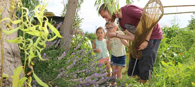 Deux enfants accompagnés par un animateur observent des insectes et découvrent les plantes mélifères dans le jardin de Grand-père