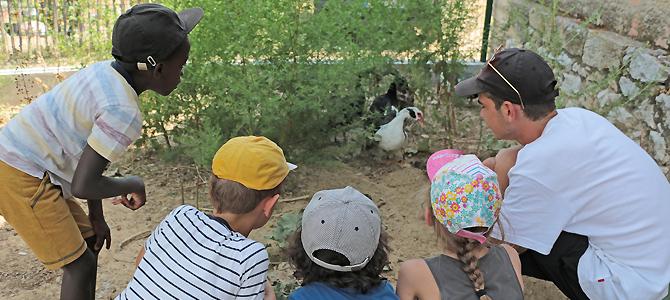 Un animateur et des enfants observent des canards dans leur enclos