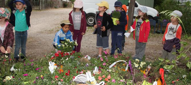 Récupération de plantes de Botanic par les enfants de l'accueil de loisirs de l'Écolothèque avant plantation sur le domaine