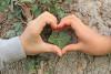 Deux mains d'enfants forment un coeur avec leurs doigts devant un tronc d'arbre