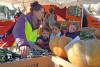 des enfant et leur animatrice observent les fruits et légumes au marché de Celleneuve