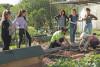 6 agents et un formateur apprenent à manipuler correctement les outils de jardinage au potager