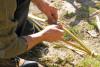 Des mains en gros plan écartes des morceaux de canne de Provence pour faire un yoyo