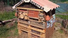 Vue sur l'hôtel à insectes construit par les enfants
