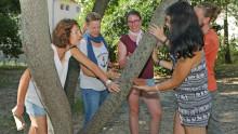 5 personnes font des empreintes de troncs d'arbres avec de l'argile