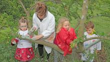 3 enfants et une animatrice protègent un abricotier en appliquant sur le tronc un badigeon d'argile