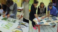 Découverte d'outils pédagogiques de l'Écolothèque