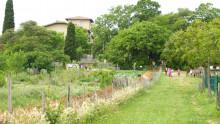 Une vue du bâtiment de l'Écolothèque avec des groupes d'enfants promenant des chevaux et des ânes