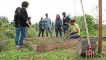 un animateur est entouré d'un groupe d'agents autour d'une parcelle dans un jardin