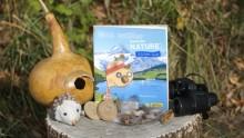"""Livre """"Mon cahier d'activités nature automne hiver"""" sur un tronc coupé avec des créations nature et une paire de jumelles"""