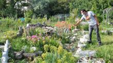 Vue sur un jardin fleuri avec une personne approchant sa main d'une fleur