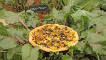 Une tarte aux légumes posée dans le potager à côté d'un panneau indiquant « chou-fleur »