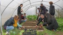 Dans une serre pédagogique de l'Écolothèque, des agents communaux préparent le sol à l'aide d'outils de jardinage.