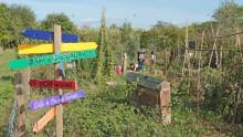 Au premier plan, un panneau avec des expressions autour des légumes et au deuxième plan, des enfants avec une animatrice qui jardinent