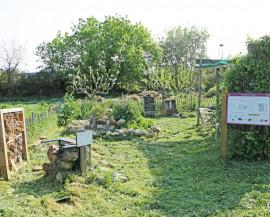 Vue du jardin des insectes