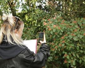 une animatrice prend des photos d'une plante pour l'identifier grace à l'application PlantNet