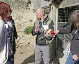 Un agent agricole explique à un groupe comment manipuler une volaille