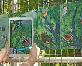 Des mains tiennent une tablette devant l'exposition présentant des dessins d'oiseaux dans un arbre