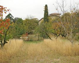Vue du bâtiment de l'Écolothèque avec des arbres aux couleurs de l'automne