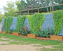 Photo d'un mur de gabion fleuri