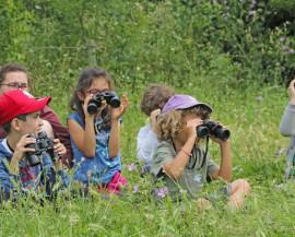 Un groupe d'enfants avec des jumelles observent les oiseaux