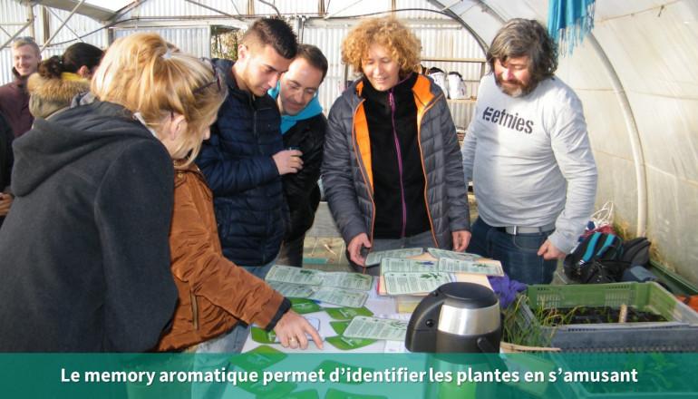 des agents jouent au jeu du mémory avec des plantes aromatiques