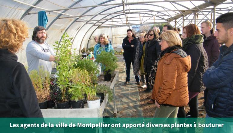 un agent de la ville de Montpellier présente toutes les plantes que les participants pourront bouturer