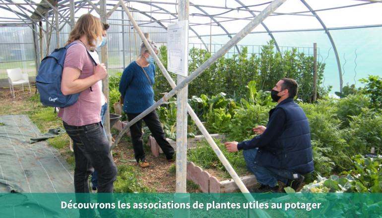un agent explique à deux participantes sous la serre quels sont les plantes à associer au potager