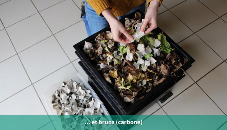 Les déchets bruns