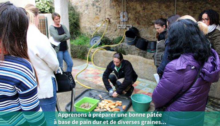 Apprenons à préparer une bonne pâtée à base de pain dur et de diverses graines...