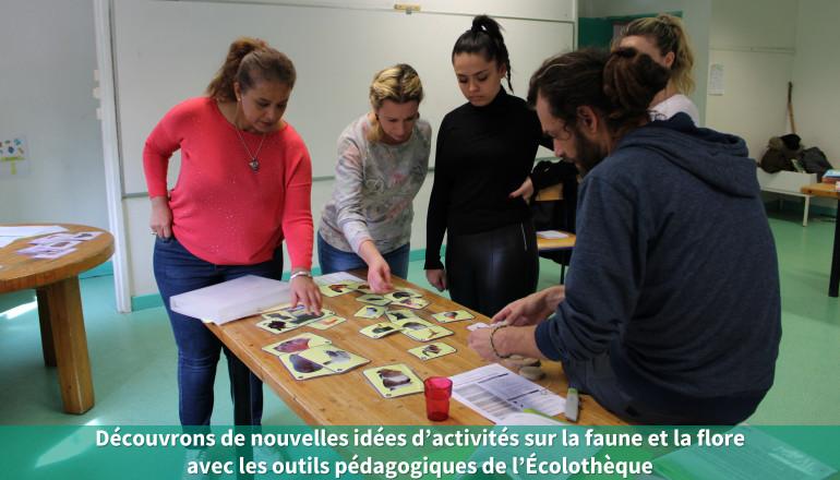 Découvrons de nouvelles idées d'activités sur la faune et la flore avec les outils pédagogiques de l'Écolothèque