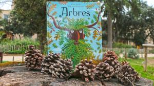 Livre mis en scène devant des arbres avec des pommes de pin en premier plan