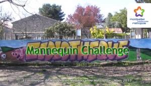 Mannequin Challenge de l'Écolothèque