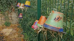 des pots colorés par les enfants et remplis de paille sont accrochés à l'envers pour accueillir les forficules