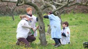 Des enfants en compagnie d'une animatrice appliquent un badigeon d'argile sur le tronc d'un arbre du verger de l'Écolothèque dans le cadre de la gestion agroécologique du domaine agicole.
