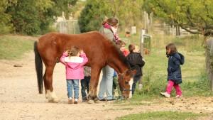 des enfants promènent un cheval
