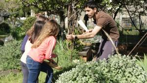 Des enfants sentent des plantes aromatiques avec un animateur pour réaliser des cornets senteurs