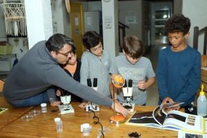Un chercheur du CEFE fait découvrir les collemboles au microscope à 4 enfants