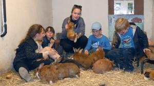 un groupe d'enfants est assis dans l'enclos des lapins et observe un lapin, porté par une animatrice