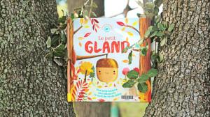 Un livre est installé entre deux troncs de chênes verts