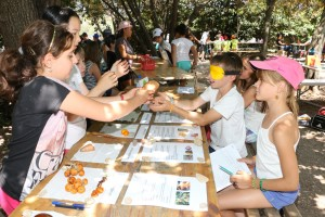 Un enfant doit reconnaître par le toucher des fruits et légumes donnés par d'autres enfants