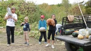 Un animateur et 3 enfants récoltent des courges