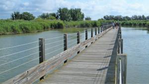 Un pont sur l'étang