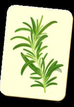 Carte à jouer avec une branche de romarin