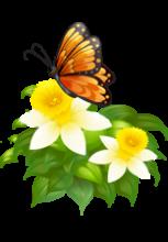 Illustration d'un papillon sur une plante avec deux fleurs blanches et jaunes