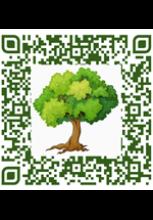QR code avec un arbre au milieu