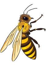 Illustration d'abeille